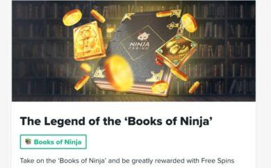 Ninja kampaania