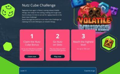 Nutz Cube